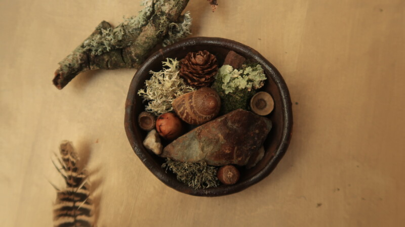 small clay pot filled with moss, shells and forest finds