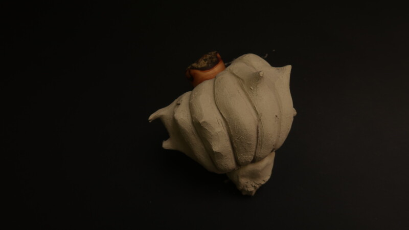 Clay vessel resembling a seed pod
