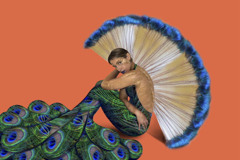Person illustrated to be wearing a peacock dress