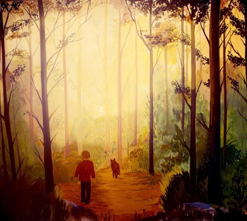 Illustration of woodland walk and sunset with a fox followed by a child